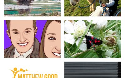 Matthew Good Foundation reveals second round of Grants for Good Finalists